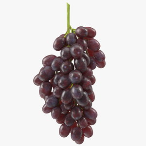 3D model cluster dark grapes