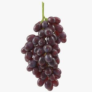 3D model cluster dark grapes