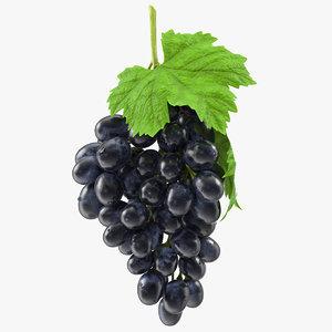 3D bunch black grapes