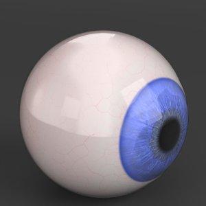 3D human eyeball model