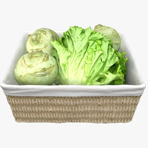 3D wicker basket salad cabbage model