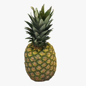 pineapple apple 3D