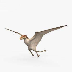 pterosaur dinosaurs animal 3D model
