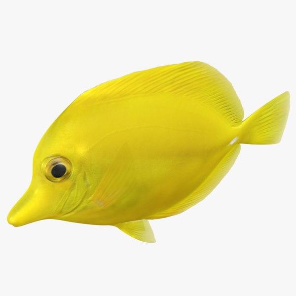 3D yellow tang rigged