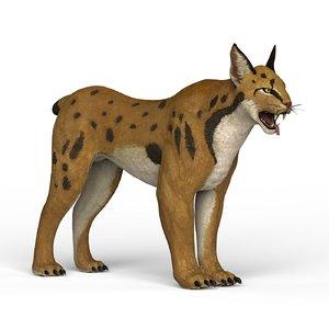 3D model ready lynx