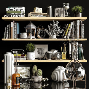 3D decorative set shelves model