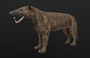 3D extinct mammals