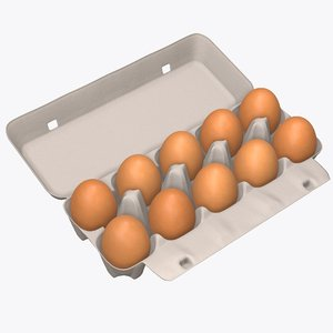 3D egg package cardboard model