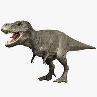 tyrannosaurus rig rex 3D model