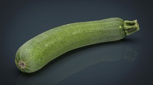 3D zucchini food vegetable