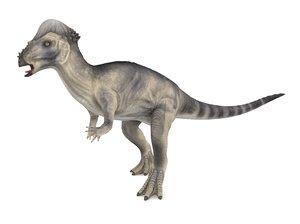 pachycephalosaurus rigged animation 3D