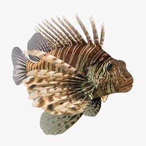 lionfish animation 3D model