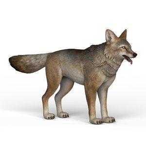 ready wolf 3D