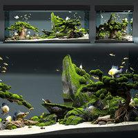 Aquarium snail king