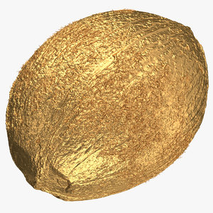 3D coconut 01 gold