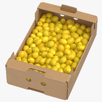 Cardboard Display Box 02 with Lemons