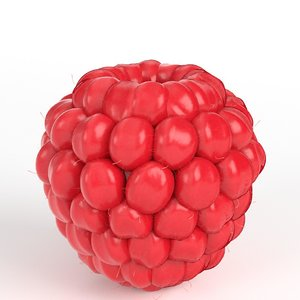 raspberry ready 3D model