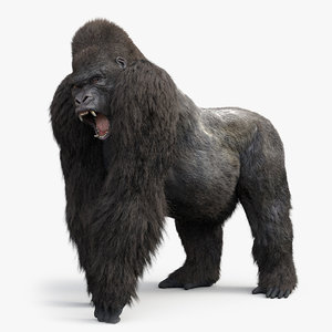 3D model gorilla fur