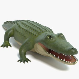 3D cartoon alligator model