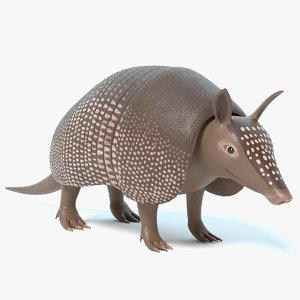 3D model armadillo cartoon