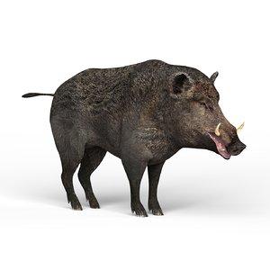3D boar materials pbr