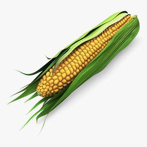 3D corn cob 1