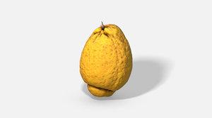 fruit citron - photoscanned model