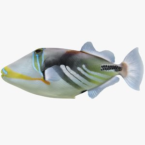 triggerfish scanline 3D model