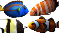 Tropical Fishes Pack (Rigged Models)