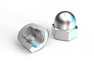 dome nut 3D