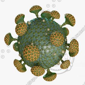 3D model coronaviruses coronaviridae isolated