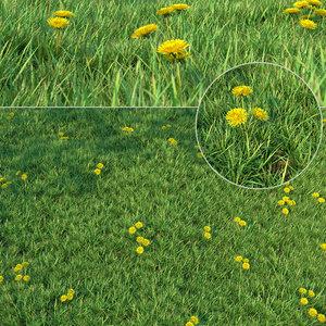 grass landscaping 3D