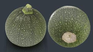 3D zucchini moon model