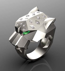 ring jewelry 3D