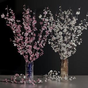 cherry blossom flower vase 3D