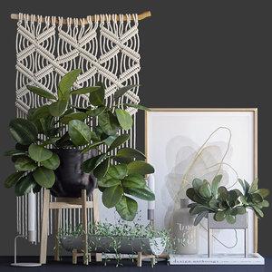 3D decorative set ficus model