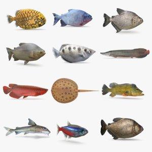 amazon river fish 3D model