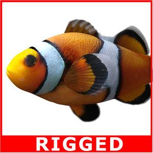 clownfish rigged 3d model