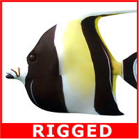 moorish idol rigged 3d model
