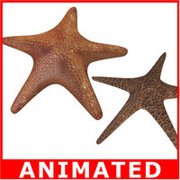 Starfishes (Rigged)