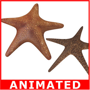 starfishes rigged 3d model