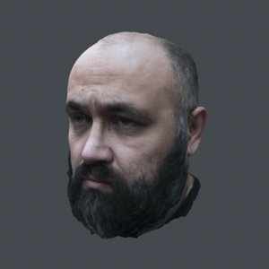 scanned realistic head old 3D model