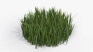 3D grass cluster - model