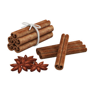 3D model anise cinnamon stick