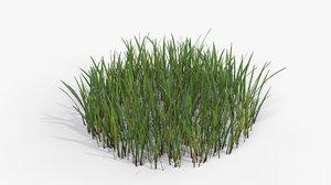 grass cluster 002 - model
