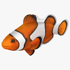 3D clownfish rigged