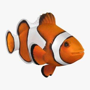 clownfish animation 3D model