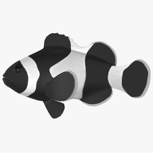 3D model black clownfish
