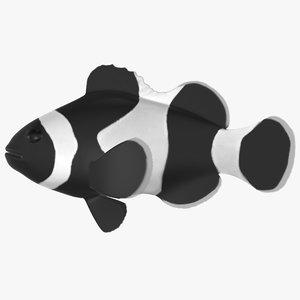 3D model black clownfish