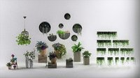plants pot 3D model